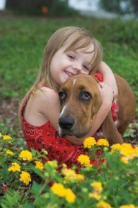 pets and allergies incl hayfever