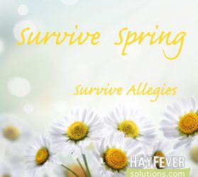 How to Survive Hay Fever Season