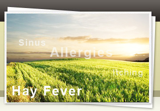 Common Misconceptions about Hay Fever