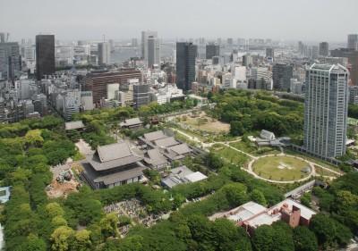 Allergies Tokyo Japan Hay Fever